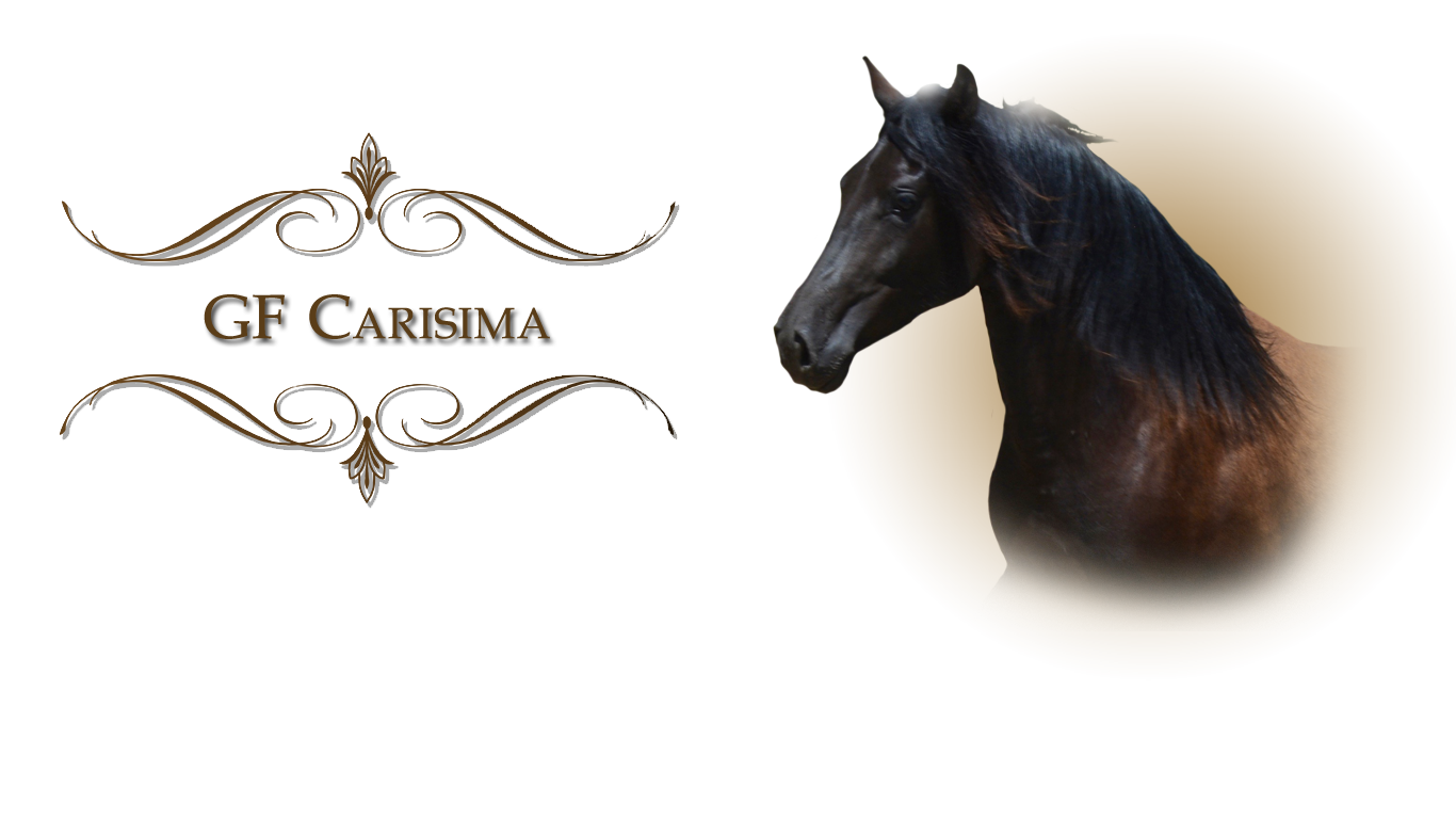 carisima-headshot-2020
